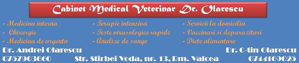 cabinet veterinar valcea