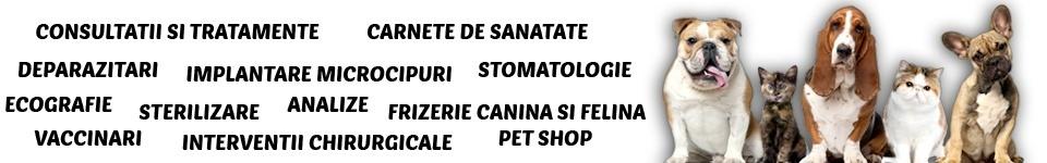 servicii veterinare pipera